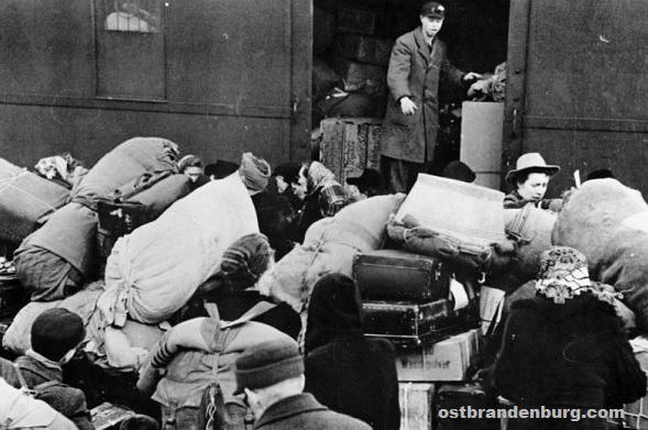 german expulsion